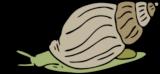 Clipart einer Schnecke