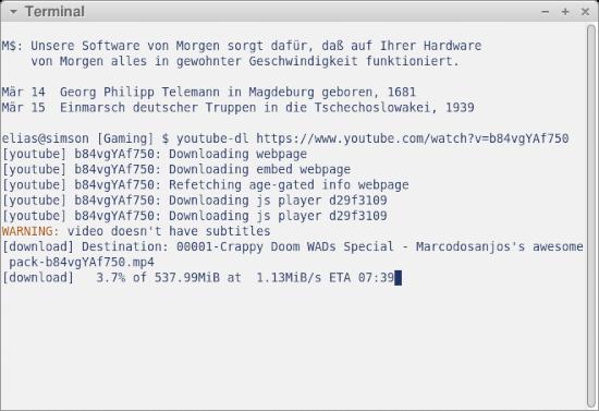 Screenshot meines Terminalfensters, in dem ich das Video mit youtube-dl herunterlade, ohne mich von Google gängeln zu lassen.